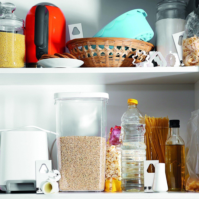 Hilfe Gegen Lebensmittelmotten In Der Küche (Schlupfwespen