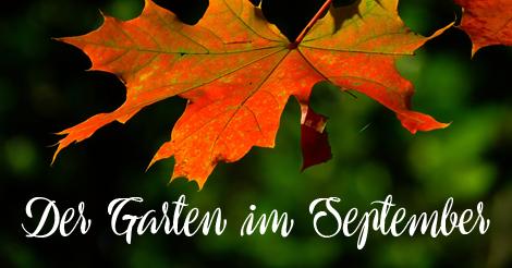 Garten Im September der garten im september twinters